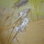 Spanish Landscapes Grasses