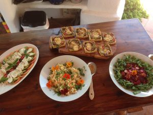 Vegetarian organic salads