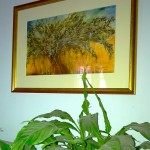 Olive Tree Prints For Sale-Private Home, Farnham, UK